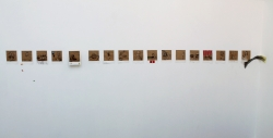 polaroid-parete-1